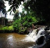 dumskalleingefäran slår samman hawaii royaltyfri bild