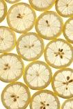 Dun gesneden citroenen Royalty-vrije Stock Foto's
