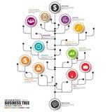Dun vector het ontwerpmalplaatje van de lijn infographic boom Stock Foto's