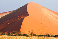 Duna 45 no deserto de Namib Imagens de Stock Royalty Free