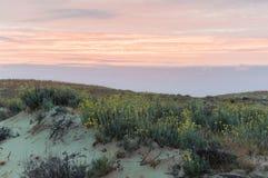 Duna al tramonto Immagini Stock Libere da Diritti