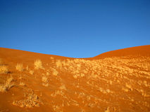 Duna arancione fotografia stock