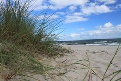 Duna da praia do mar Báltico, Polônia Imagem de Stock