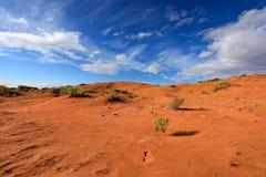 Duna de areia cor-de-rosa coral Imagens de Stock