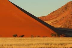 Duna de areia do deserto Imagem de Stock
