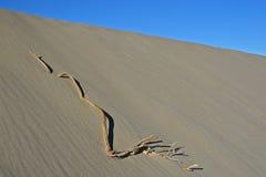 Duna de areia em Death Valley Fotografia de Stock