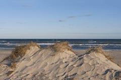 Duna de areia na manhã Sun Fotografia de Stock Royalty Free