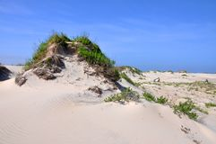 Duna de areia no cabo Hatteras, North Carolina foto de stock royalty free