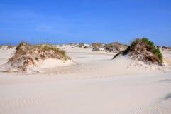 Duna de areia no cabo Hatteras, North Carolina imagem de stock