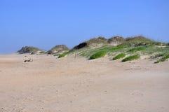 Duna de areia no cabo Hatteras, North Carolina imagens de stock