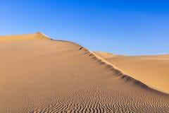 Duna de areia no nascer do sol no deserto Imagem de Stock