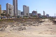 Duna de areia reabilitada na parte dianteira da praia em Durban Fotos de Stock