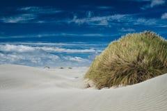 Duna de arena de despedida de la escupida Foto de archivo libre de regalías