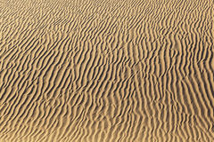 Duna de arena en salida del sol en el desierto Imagenes de archivo