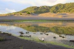 Duna de arena que inundó el agua Imagenes de archivo