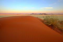 Duna de arena roja en Elim Dunes Imagen de archivo libre de regalías