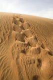 Duna de la arena en el desierto de Dubai Imágenes de archivo libres de regalías