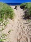 Duna de la playa Imagenes de archivo