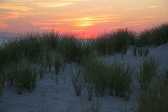 Duna de la puesta del sol imagenes de archivo