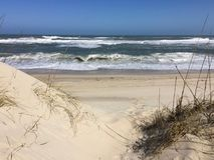 Duna de Sandy na praia Imagem de Stock