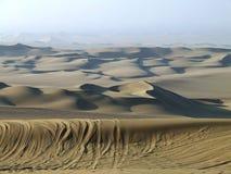 Duna del deserto Fotografia Stock Libera da Diritti