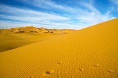 Duna del deserto, Libia Fotografia Stock