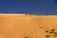 Duna del deserto, sabbie di Wahiba, Oman immagine stock libera da diritti