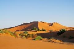 Duna del desierto de la arena en Sáhara en la puesta del sol Foto de archivo libre de regalías