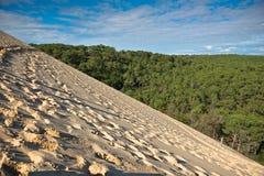 Duna di Pyla, il più alta duna di Europa Fotografia Stock Libera da Diritti
