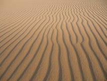 Duna di sabbia Fotografia Stock
