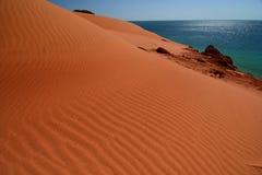 Duna di sabbia al parco nazionale di François Peron Baia dello squalo Australia occidentale immagini stock