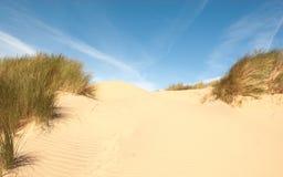Duna di sabbia con le ondulazioni e l'erba Fotografie Stock Libere da Diritti