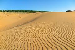 Duna di sabbia, Mui Ne, Vietnam Fotografia Stock