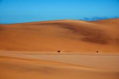 Duna di sabbia nel deserto di Namib Fotografia Stock
