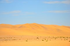 Duna di sabbia rossa Immagine Stock