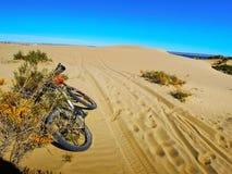 Duna di sabbia sul modo a Punta Loma Fotografia Stock Libera da Diritti