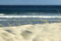 Duna di sabbia sulla spiaggia Fotografia Stock