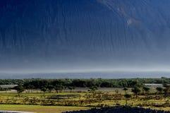 Duna e árvores bonitas de areia, com grandes montanhas Fotografia de Stock Royalty Free