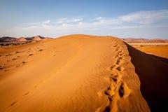 Duna en el desierto de Namib imagen de archivo libre de regalías