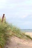 Duna litoral Fotografia de Stock Royalty Free