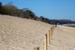 A duna recentemente constru?da de Zempin a Zempin no mar B?ltico A duna tinha sido lavada afastado por uma mar? da tempestade imagem de stock