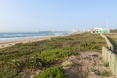 Duna Rehabiliation en la playa de Durban, Suráfrica Foto de archivo libre de regalías