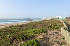 Duna Rehabiliation sulla spiaggia di Durban, Sudafrica Fotografia Stock Libera da Diritti