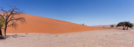 Duna 45 in sossusvlei Namibia con l'albero morto Fotografia Stock Libera da Diritti