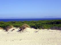 Duna in spiaggia di Bolonia, Cadice, Spagna fotografie stock libere da diritti