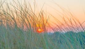 Duna teniendo en cuenta salida del sol Fotos de archivo libres de regalías