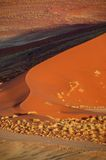 Duna vermelha no deserto de namib Fotos de Stock Royalty Free