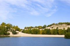 Duna y árboles Imagen de archivo libre de regalías
