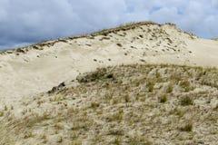 dunaire Photo libre de droits