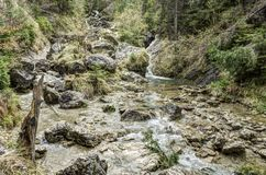 Dunajec river gorge in spring Royalty Free Stock Image